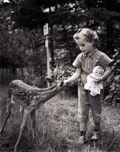 anim, bambi, white, children, black
