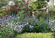 """Growing your own wedding flowers? Three must-haves: zinnias, dahlias, """"Blue Horizon' Ageratum. Read about it here: http://bit.ly/GFcaGA"""