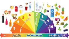 pH of various foodstuffs