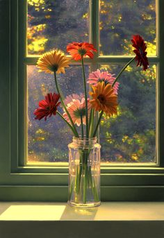 bouquet, gerber daisies, window, color, art, scott prior, beauti, flowers, country look