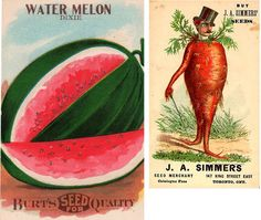 Amazing Vintage Seed Packets