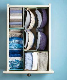 drawers-divided-underwear-ictcrop_300.jpg 300×357 pixels