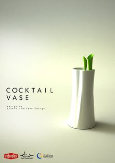 Cocktail Vase - Design of plastic containers for the home (Master's class 2013 for Stefanplast)
