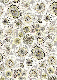 patterns, sea urchin