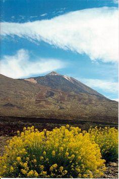 Teide  Tenerife  Spain
