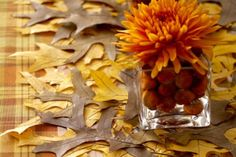 Nature's tablecloth: overlapping flattened leaves.