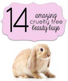 14 Great Cruelty-Free Beauty Buys. You gotta see these! #crueltyfree #beauty