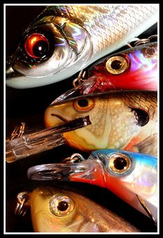 Fishing lures on pinterest for Cool fishing lures