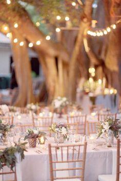 rustic gardens, wedding receptions, lighting, galleri, backyard parties