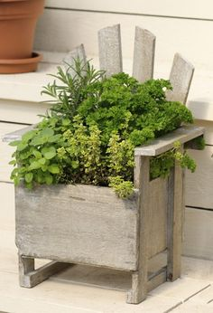 Container Gardens ~ Pots & Planters, herb chair