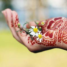 Henna Daisy Sacrifice
