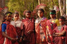 Baiga is a tribe found in MP, UP, Chhattisgarh and Jharkhand. The Baiga tribe in MP is known for its unique culture. They do not interact even with other tribals like the Gonds, believe in a hand-to-mouth existence, and do not try to access education, eat outside their community, or associate with others. After a death in the family, the Baigas just leave the house and build another. They are totally dependent on the jungle. Tattooing is an integral part of their lifestyle is the Baiga tribe.