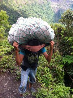 El Salvador - tlameme sacando verduras del crater del Volcan de San Salvador