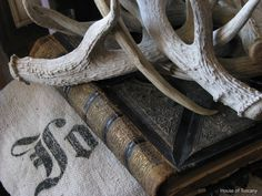 Leather Book with stag horns