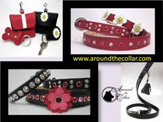 Leather accessories for your furry fashionista www.aroundthecollar.com