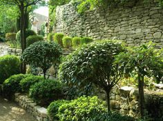 Varied shades of green snipped topiaries against a rustic stone wall.