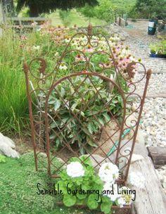 garden-screen-sensible-gardening