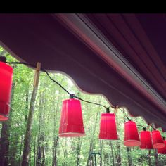 Red solo cup lights!!