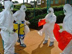 west africa, médecin san, health organis, san frontièr, health author, ebola outbreak, sierra leone