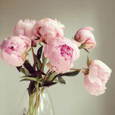 Pink peonies. #flowers #bouquet #summer #romantic