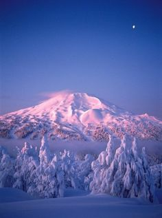Mt Bachelor, Bend, Oregon, yep, USA. Even if I never left the states again, I could never see all the spectacular places and have enough time to visit with and listen to all of the people whose stories I'd love to hear. New Houses, Mountain, Bend Oregon, Blue Skies, Life Changing, Central Oregon, Bendoregon, Place, Oregon Travel