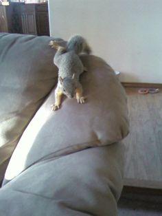 My little Peanut