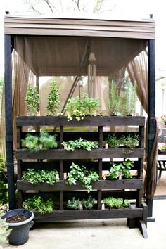 5 Easy Small Vegetable Garden Ideas to Try canopi, garden ideas, pallet walls, garden hous, pallet garden, vegetables garden, small gardens, veget garden