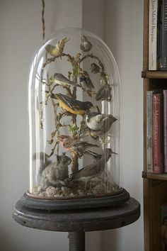 Bell Jar, From the Collection of Ryan Cohn