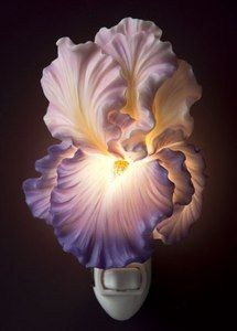 Ibis and Orchid Purple Bearded Iris Night Lightwaughinteriordesigns.com #gifts #night light