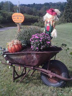 Wheelbarrow decorated for Fall