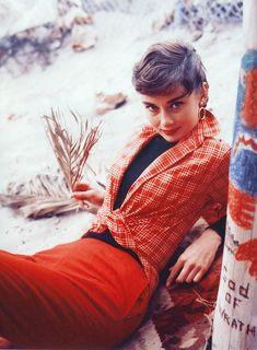 Audrey 1954