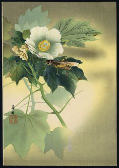 Grasshopper on flowering plant by Kako Tsuji, Japan #brushpainting #fineline #Ink and Wash Painting #Chinese Art #Japanese Art
