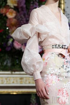 Alexis Mabille Fall Winter 2013-2014
