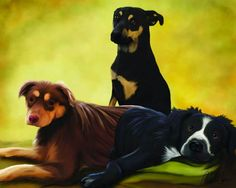 Blog the Change for Animals: Greenville Humane Society | Sweet. Dog. Life.