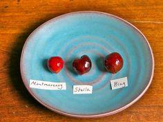 DIY Recipe: Boozy Cherries 2½ Ways Straight Up Cocktails and Spirits