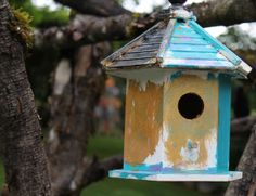 Great Fathers Day idea! Let kids paint birdhouses to give as gifts