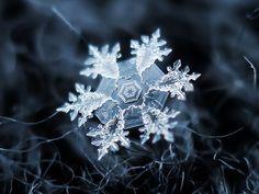 (Real) Snowflake