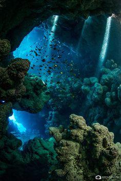 Underwater cavern, Red Sea, Egypt
