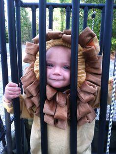 halloween costumes, lion halloween, cage lion