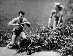 underwater photos, 1950s, retro photography, underwat photographi, bruce mozert, underwater photography, sea, vintageretro photographi, underwater art