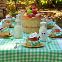 Modern Barnyard Kid's Party