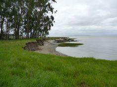Point Pinole Regional Shoreline Park.