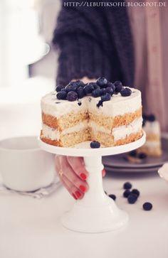 Noix de Coco Gâteau aux Bleuets