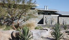 Palm Desert Residence by Heliotrope Architects