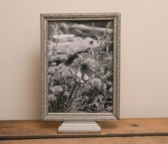 Victorian Poppy Print photograph Antique Vintage by MollysMuses, $35.00