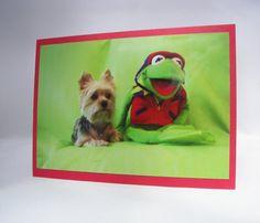Yorkie Dog Photo Greeting Card All Occasion Blank by lillyzcardz, $4.00