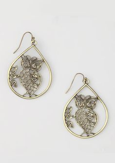 Gold Owl Teardrop Earrings