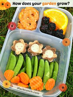Garden themed healthy bento lunch in @EasyLunchboxes container