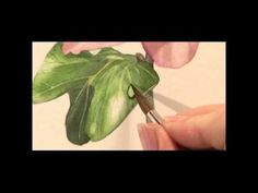 DVD - A-Z of Flower Portraits with Billy Showell - YouTube
