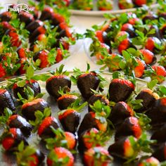 And for dessert... HUNDREDS AND HUNDREDS of #FullyRaw Chocolate covered strawberries! Who wants one?! Recipe here: http://youtu.be/Q0VCyTXitHM